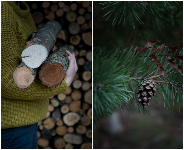 autumn3-collage